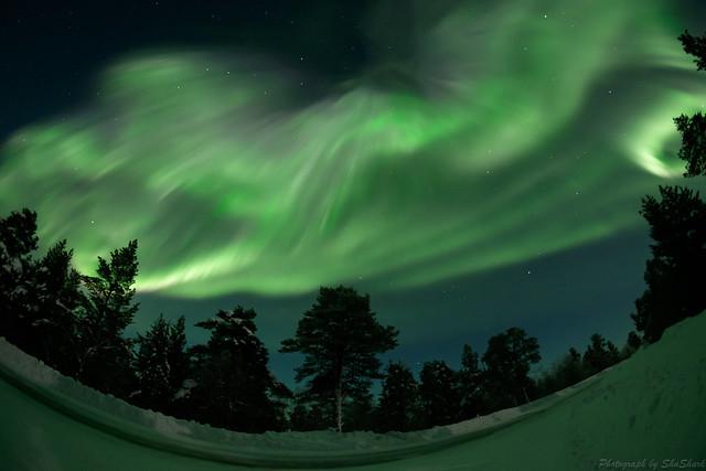 20180222-Finland-DSCF1583