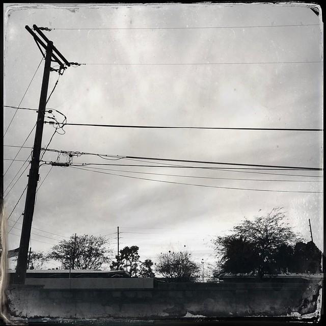 Backyard Lines ➿