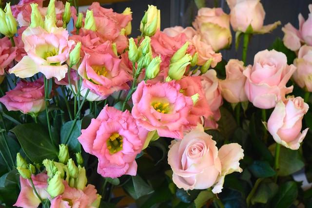 Blooms at Lady Penelope's, Canterbury