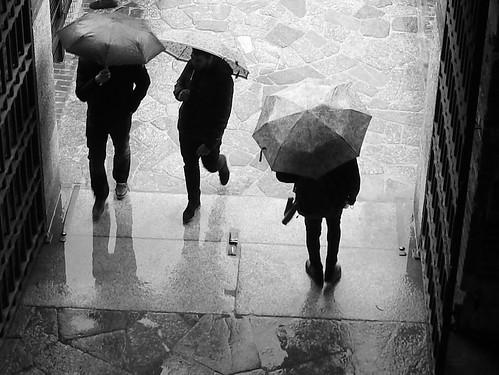 Milano - Castello Sforzesco (ombrelli)
