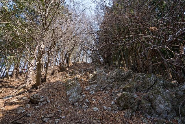 武川岳への急斜面