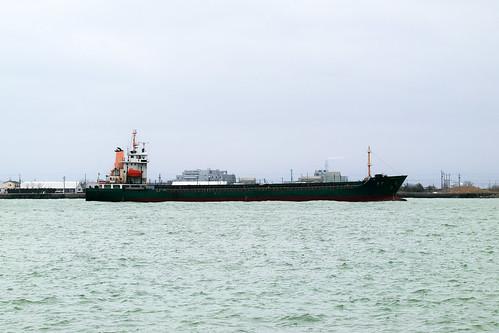 SDIM1357