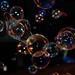 Profilbildspende für SeifenblasenfreundInnen by UsualRedAnt