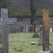 Dartmoor Diary March 2018-85.jpg