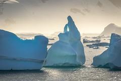 Yalour Islands, Antarctica