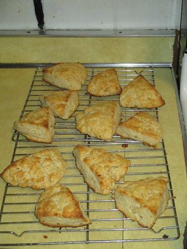 Sour cream and ginger scones