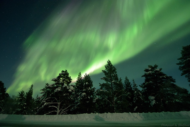 20180222-Finland-DSC_6487