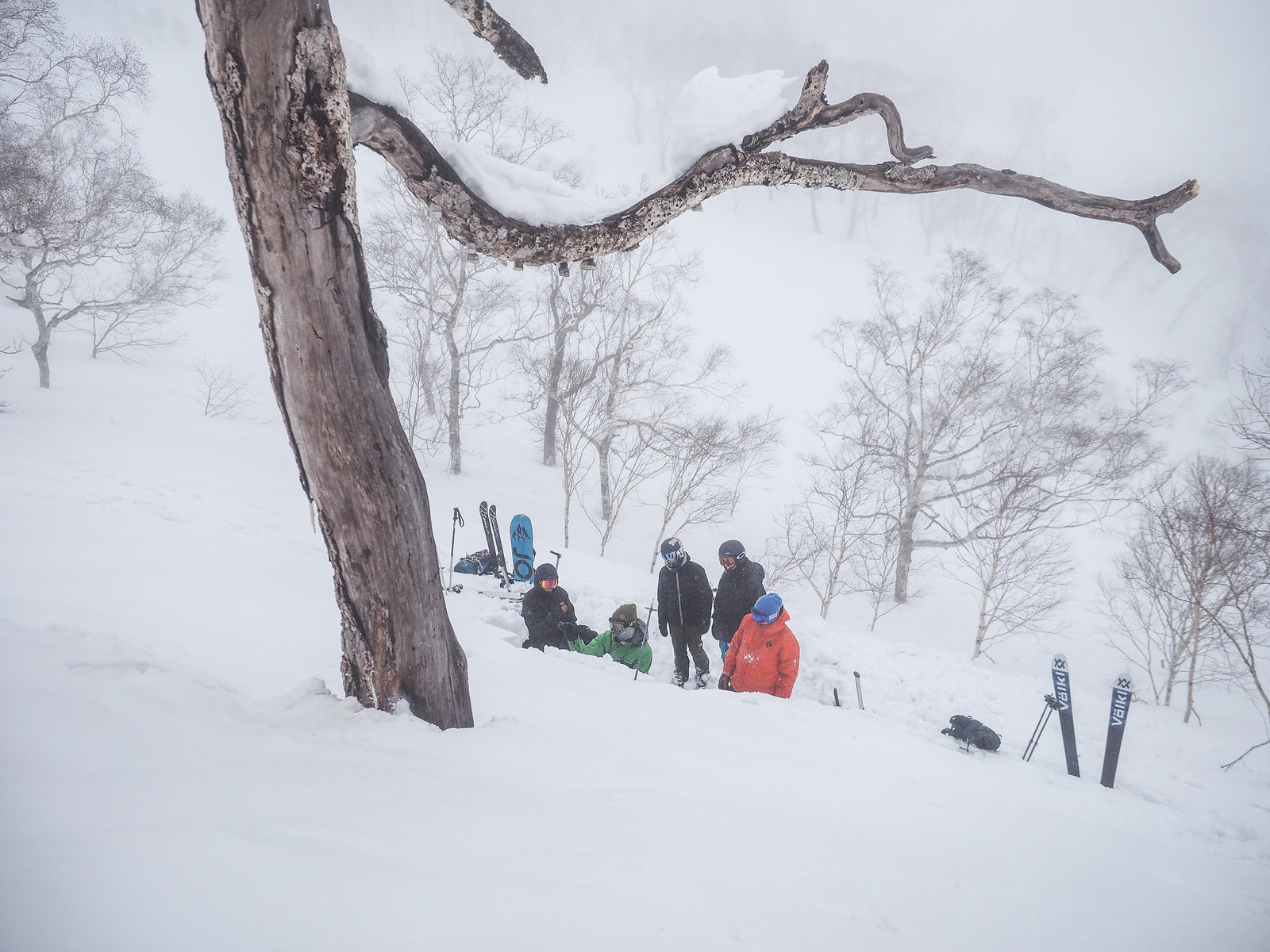 Whiteroom Tours AST2 Avalanche Safety Training Course (Niseko, Hokkaido, Japan)