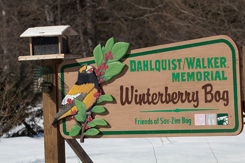 Winterberry Bog sign