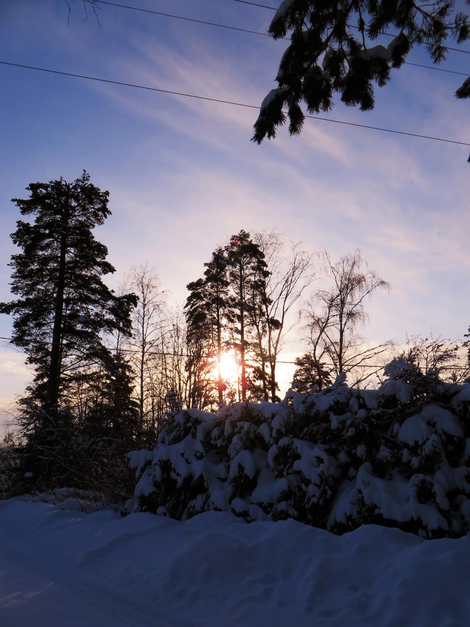 talvenkauneimmat9