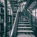 Vier Leben by michael_hamburg69