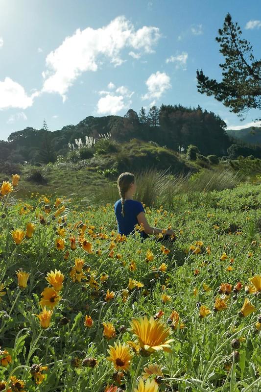 Noch ein Werbefoto für die Sommersaison, Maria meditiert mitten im nun heimischen südafrikanischen Dünen-Unkraut.
