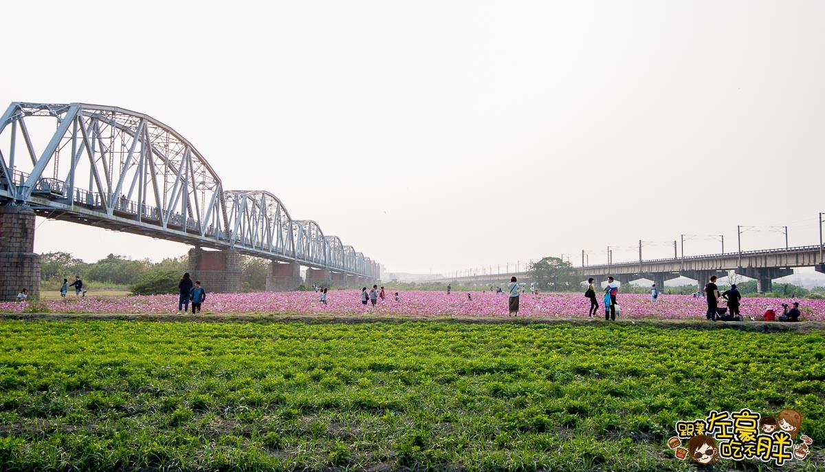 舊鐵橋(屏東端)花海-16