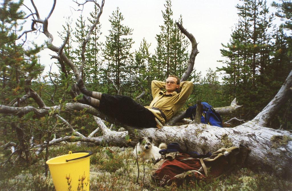 Игорь и причудливое мертвое дерево  #Проф, #ИгорьЧеботько
