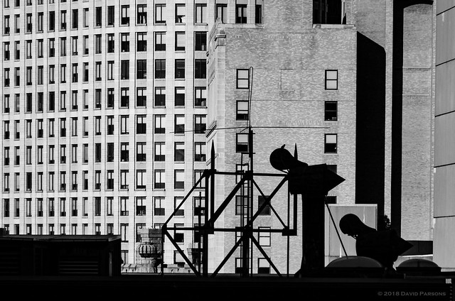 Silhouette in the city