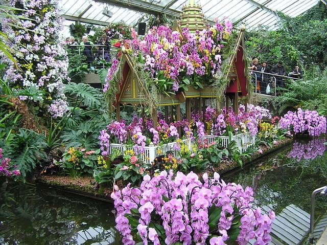 Kew Gardens 23rd Orchid Festival