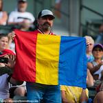 Romanian Fan