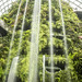 The Cloud Forest - Waterfall by Amit Aggarwal0990