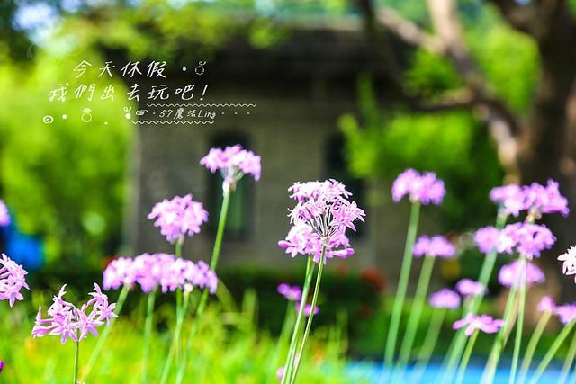 IMG_5579-11