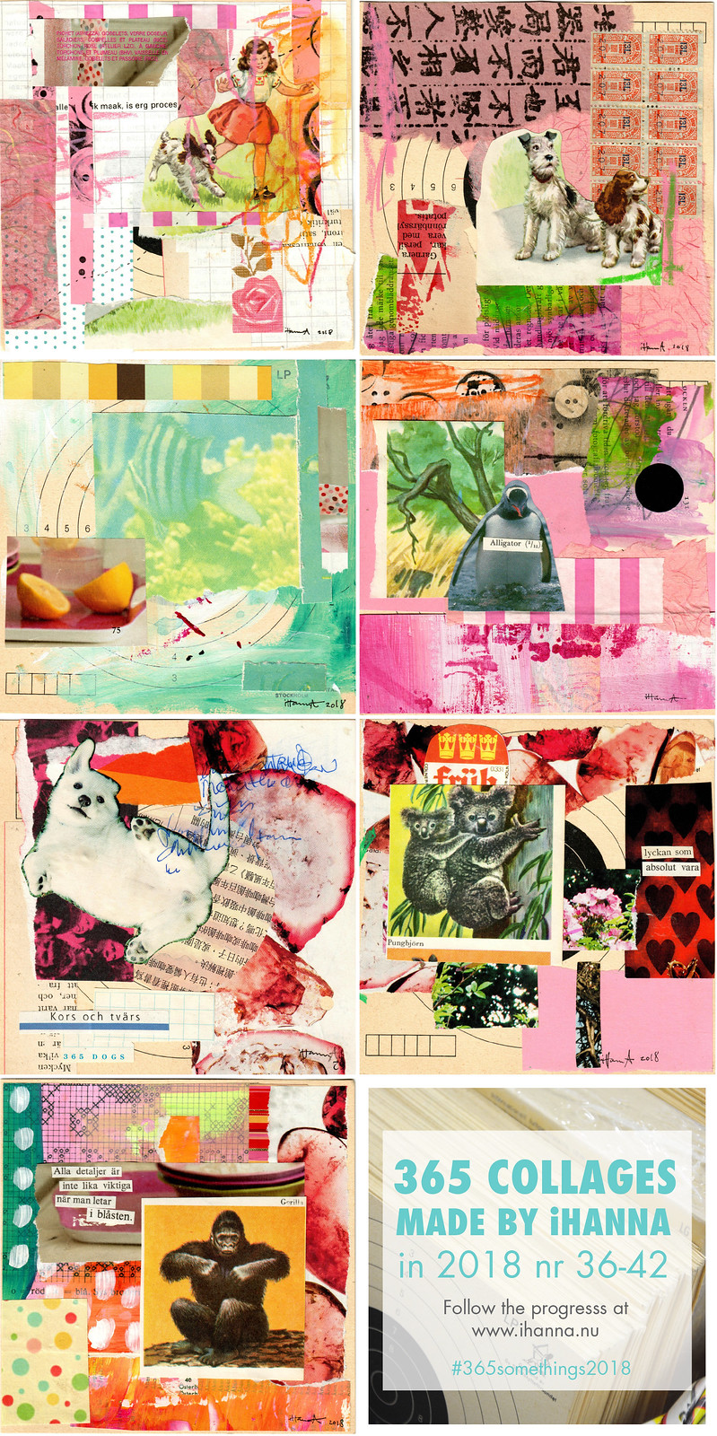 iHanna's 365 Collages in 2018, week 6 themed  Animal Friends - by iHanna #365somethings2018 #collage