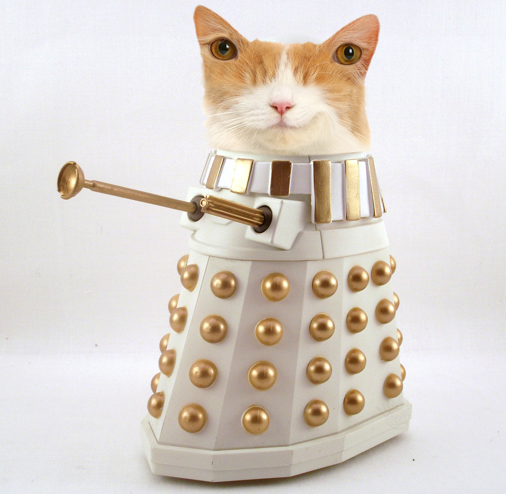 Obey FP Dalek now