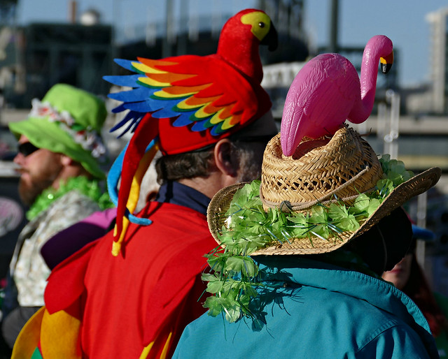 Tropical Birds Love St Pat's Parade