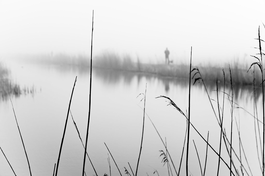 Walkers In The Reed
