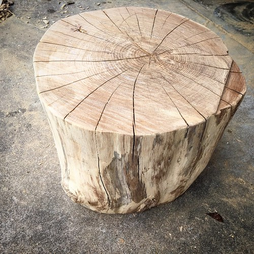 Stump table in the making.