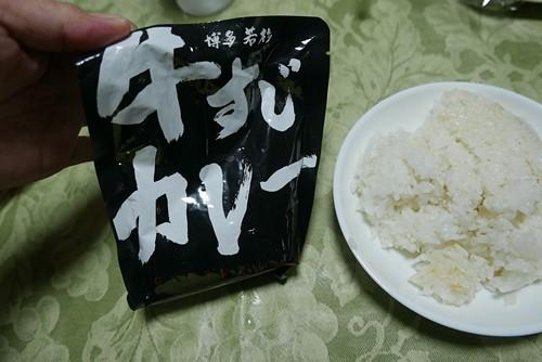 wakasugigyusujicurry011
