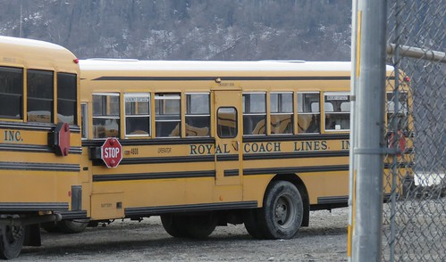 Royal Coach Lines 4800