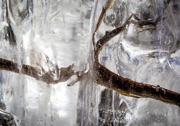 jää luontokuva taidekuva jäätynyt oksa maaliskuu