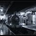 Timeline Bluebell Line Event-2.jpg