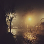 City Night Fog