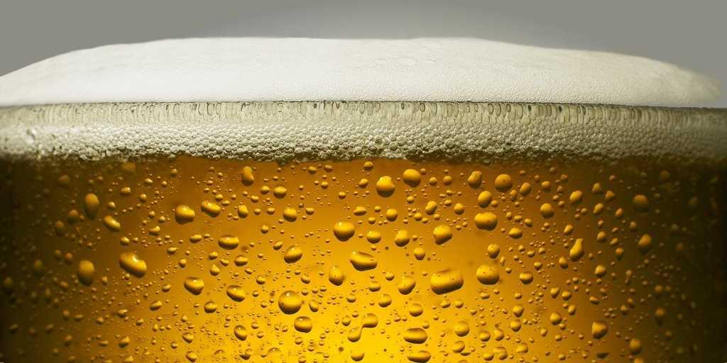 Les scientifiques ont brassé une bière au goût houblonné sans le houblon
