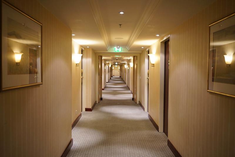 法蘭克福洲際酒店 (12)
