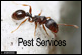 Pest Control Lynnfield MA