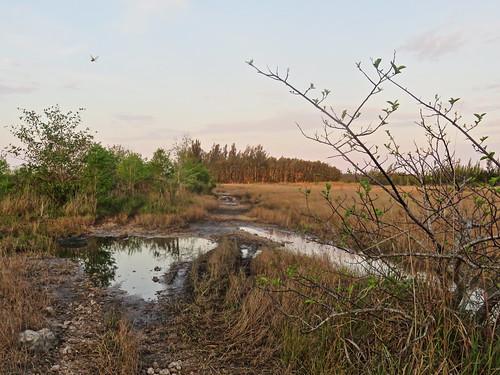 Water low at Wet Prairie 20180307