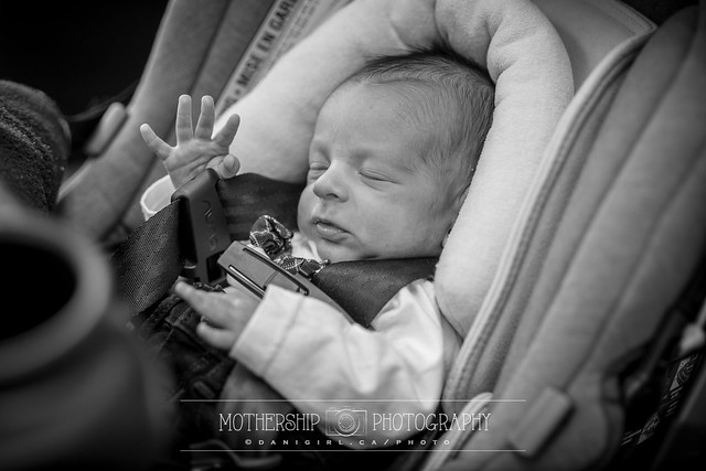 Brit Milah by Ottawa photographer Danielle Donders