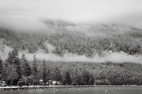lake fog overcast mount kidd winter morning cultus british columbia canada black white monochromatic clouds snow