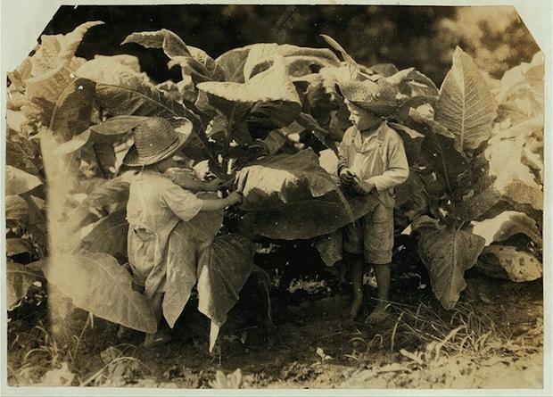 Детский труд в США #8