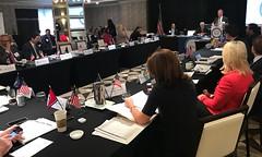 NLGA-Federal States Meeting