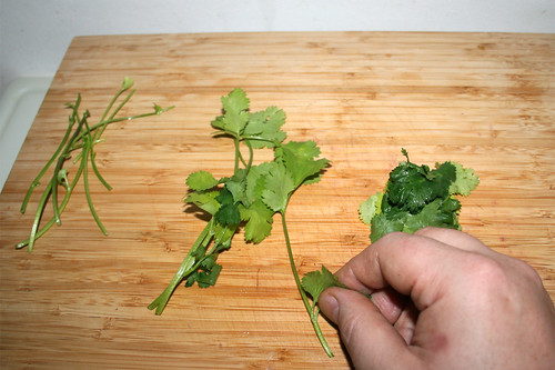 42 - Blätter von Stielen zupfen / Pick leaflets