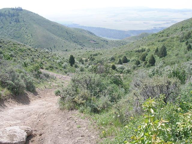 Stinking Springs ATV and Mountain Biking Trail