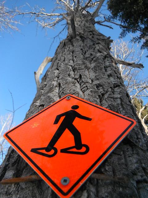 HTMT  This Way :)