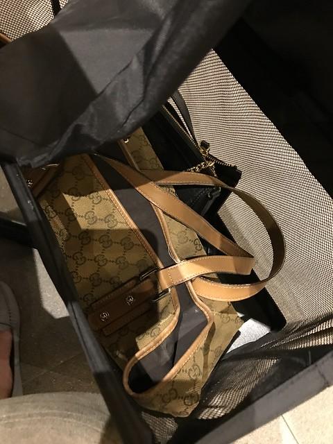 Paradise Dynasty,  handbag caddie