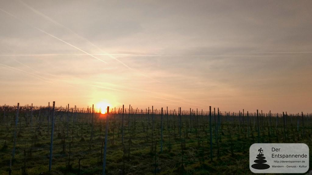 Sonnenaufgang über dem Selztal zwischen Zornheiim und Sörgenloch