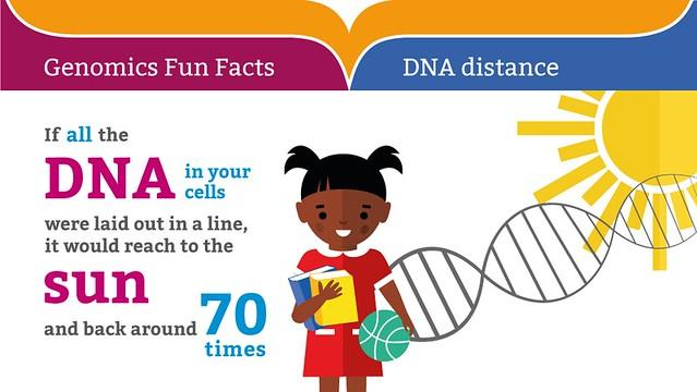 Genomics Fun Facts: DNA distance