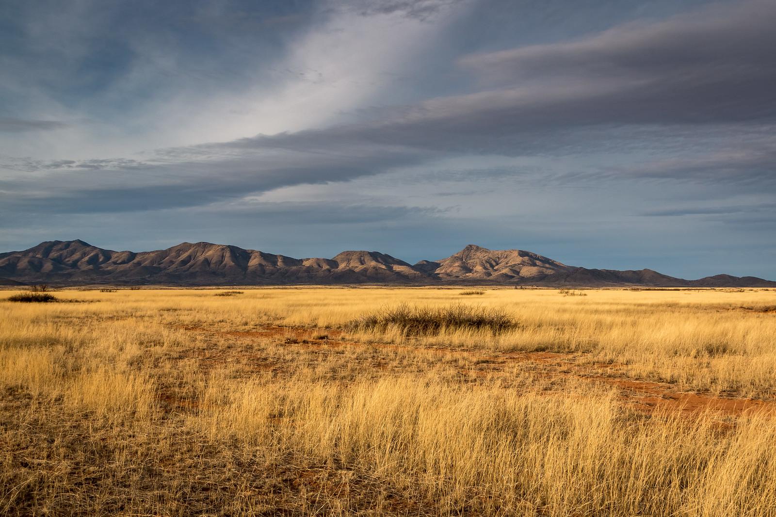 Chiricahua - Arizona - [USA]