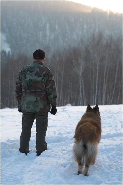 Canadian Kennel Club Dog Breed Selector