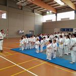 Concentración de Judo